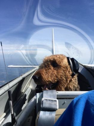 Duke Coming Home